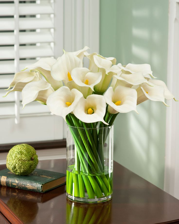 Best images about calla lilies on pinterest