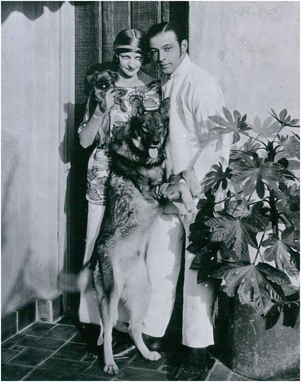 Natacha Rambova, Rudolph Valentino and two of their dogs