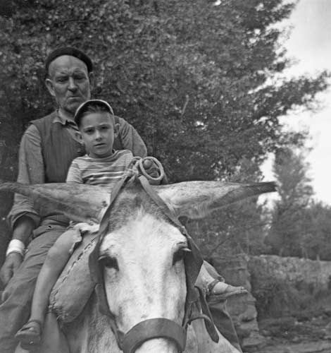Mi abuelo Lorenzo y yo, el burro se llamaba Rusini. Borja (Zaragoza), 1956.