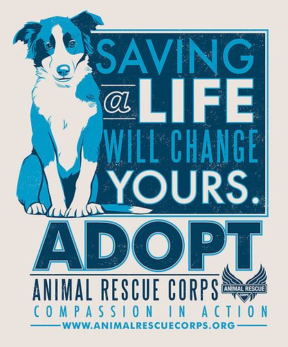 ARC Adopt a dog poster by Lucie Rice   by jenvaughnart