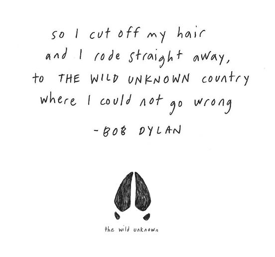Dylan O'Brien, Bob Dylan, Bobs Dylan, Unknown Country, Wild Unknown, Into The Wild, Inspiration Quotes, Bobdylan, Cut Hair Quotes