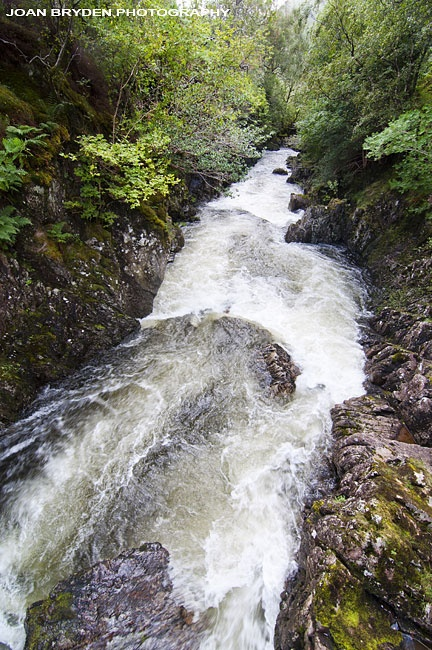 Solid, firm banks allow the wild river to do what she needs to do, and go where she needs to go