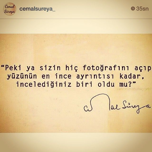 Ceyda Düvenci @ceydadvenci Instagram photos | Websta (Webstagram)