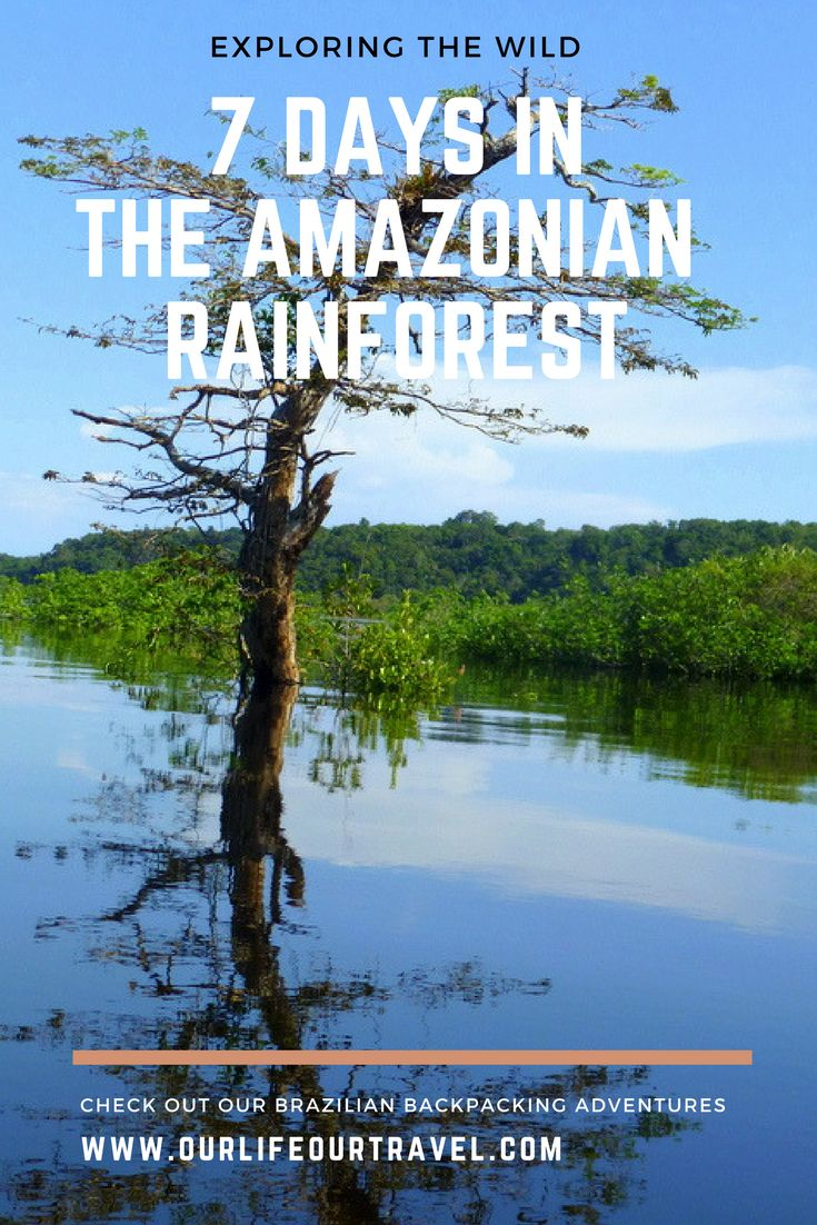 7 days in the Amazonian Rainforest on the Rio Negro near Manaus. Wildlife spotting, Indian village and sleeping in the jungle. A must do adventure.