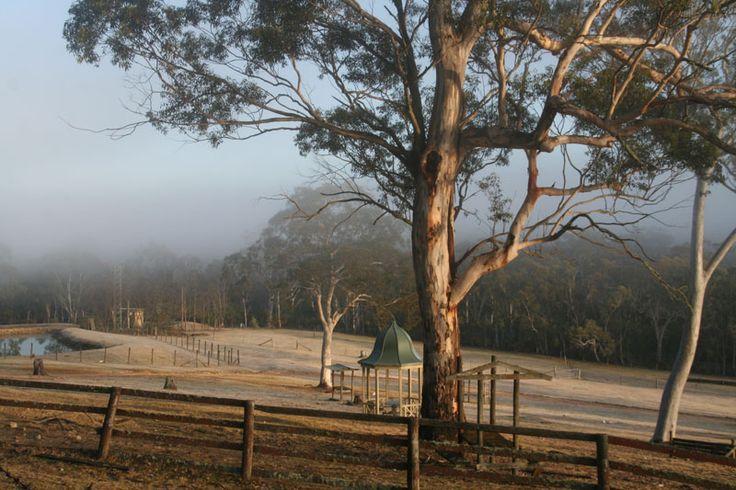 Early morning in winter  July 2014