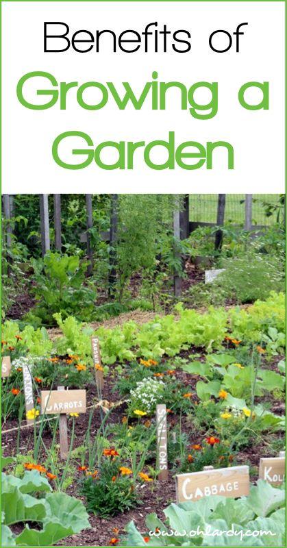 10 Benefits Of Growing A Garden Backyard Vegetable And Fruit Gardening