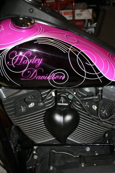 Ride a hog by myself..................................2006 Harley Davidson ~ I know it is more pink than purple but ♥♥♥