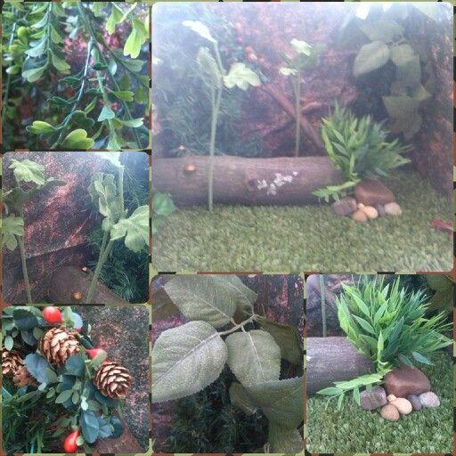 Jeeys mijn bos stop motion set is af! Sommige bomen en planten zijn niet vast gelijmd zodat ik ze kan verplaatsen. Nodig: -heel veel nepplanten (2 stukken kerstboom, takjes van een nep boeketje, nep blaadjes, de steeltjes van nep bloemen, slinger van nep planten, nep kruiden en nep hangplanten) -Nep gras van een gras mat -Rots papier -Echte stenen -dikke tak van een echte boom -dunne tak van een echte boom -plakstiften -Lijmstiften voor in het lijmpistool -Kartonnen doos