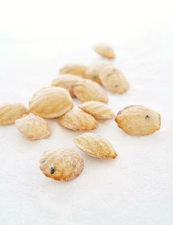 passionfruit madeleines