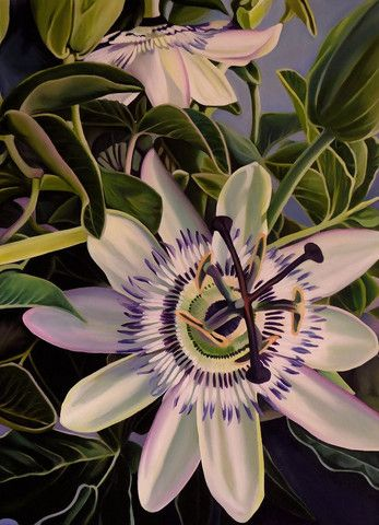 "07 Trove Exhibition ""Passion Flower Dreaming""  Original Artwork 51 cm x 76 cm"