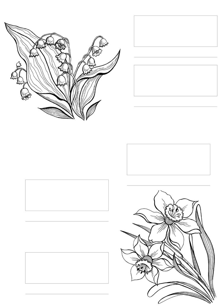 copic coloring flowers printable pages and coloring books for