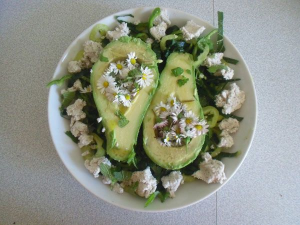Zutaten: Gänseblümchen, Zitronenmelisse, Paprika, Avocado, veganer Nusskäse, Lindenbaum Blätter