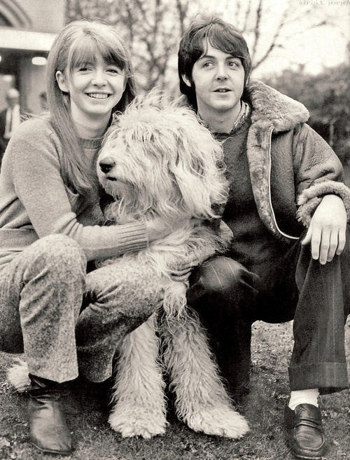 """Paul & Jane - As you might or might not know, the Beatle song """"Martha My Dear"""" was about Paul's dog Martha. #celebrities #dogs"""