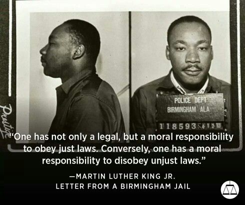 a letter from birmingham jail essays on mlk s letter from the birmingham 45998