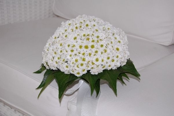 bouquet di margherite, tema ideale per un matrimonio giovane e country