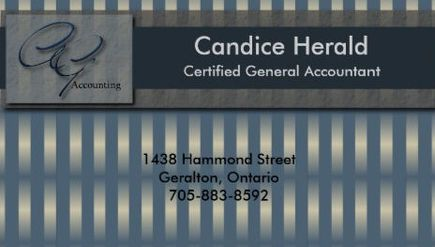 Classy Faux Metallic Blue Stripes Certified Accountant Business Cards http://www.zazzle.com/accounting_business_card_wavy_stripes-240674425926474396?design.areas=%5Bbusiness_front_horz%2Cbusiness_back_horz%5D&rf=238835258815790439&tc=GBCAccounting1Pin