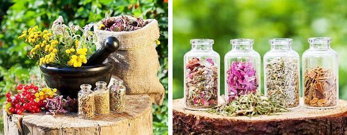 Se umple un borcan pe un sfert cu plante uscate și mărunțite, apoi se completează cu oțet. Plantele trebuie să fie bine acoperite cu oțet. Dacă folosiți rădăcini, le puteți mărunți cu ajutorul robotului cu lama S.