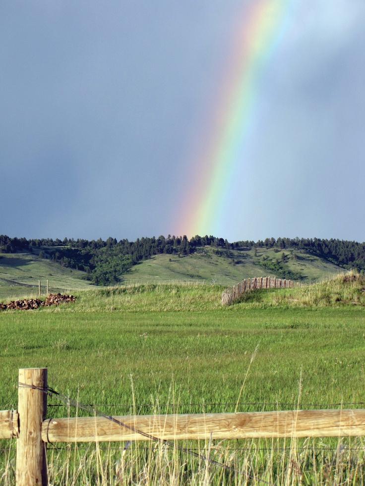 Rainbow in the Black Hills