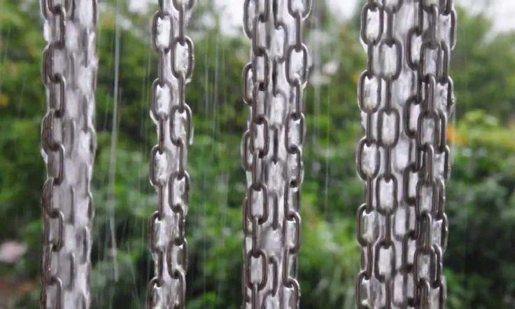 rain gutter trellis - Google Search