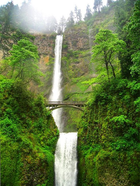 Multnomah Falls, ORCouples Time, Favorite Places, Multnomah Falls Oregon, Mulnomah Fall, Climbing Multnomah, Beautiful Places, Travel, Photos Shared, Summer 2011