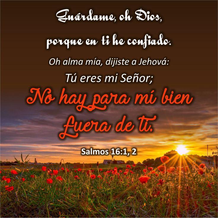 """El gran mañana sólo con Él.  Salmos 16:1, 2 """"Guárdame, oh Dios, porque en ti he confiado. Oh alma mía, dijiste a Jehová: Tú eres mi Señor; No hay para mí bien fuera de ti.""""  Cada año nuevo l…"""