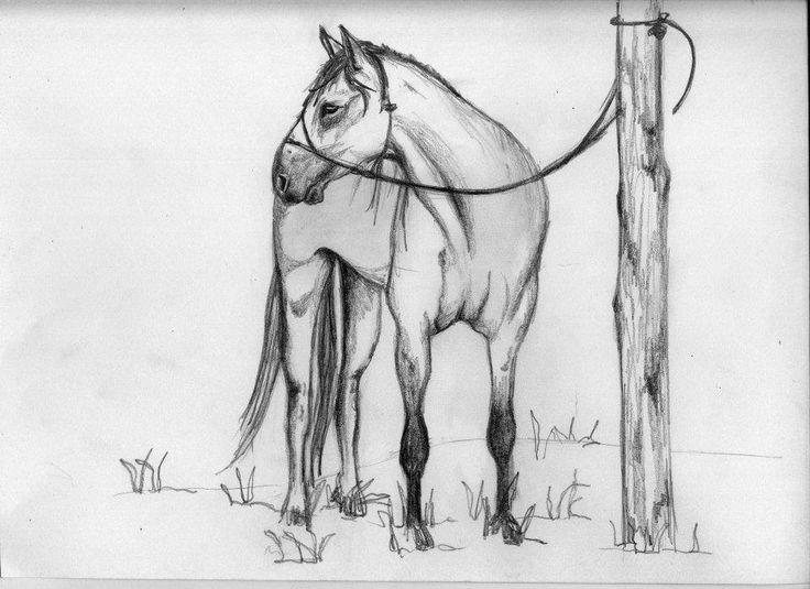 #dibujo #ilustracion #lapiz #blancoynegro #milagalarreta #caballos #horses