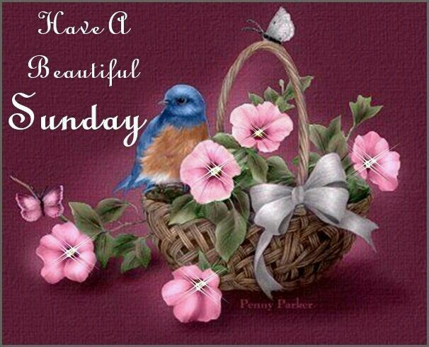 To You All Wish You A Beautiful Sunday God Bless You
