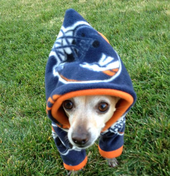 Denver Broncos NFL Dog Hoodie --- What a neat product. This would be great for keeping your pup warm while you watch the Broncos play in the Superbowl! --- Since 1951, the Humane Society of Fremont County has provided love and care for the animals of Canon City, CO. http://www.canoncityhumanesociety.org/