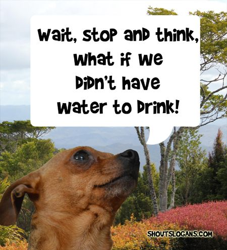 50 Best Save Water Slogans, Quotes and Posters