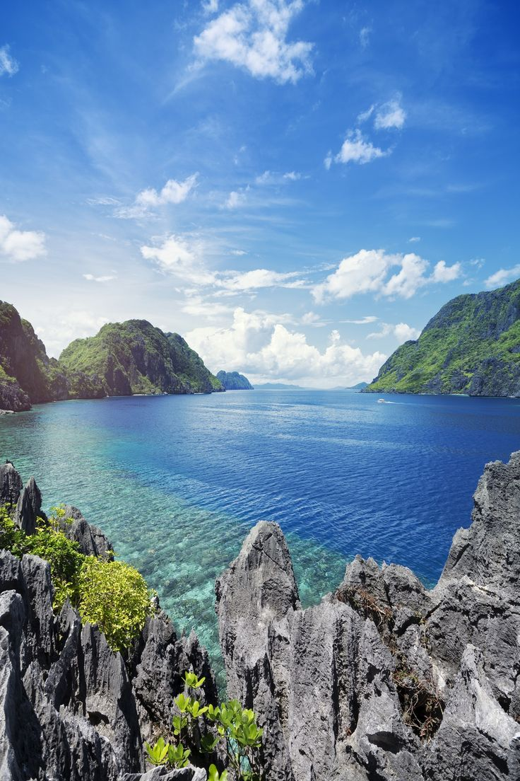 Get a look at the fascinating wildlife, indigenous culture and military history of the Philippines on a day trip to Subic Bay from Manila.