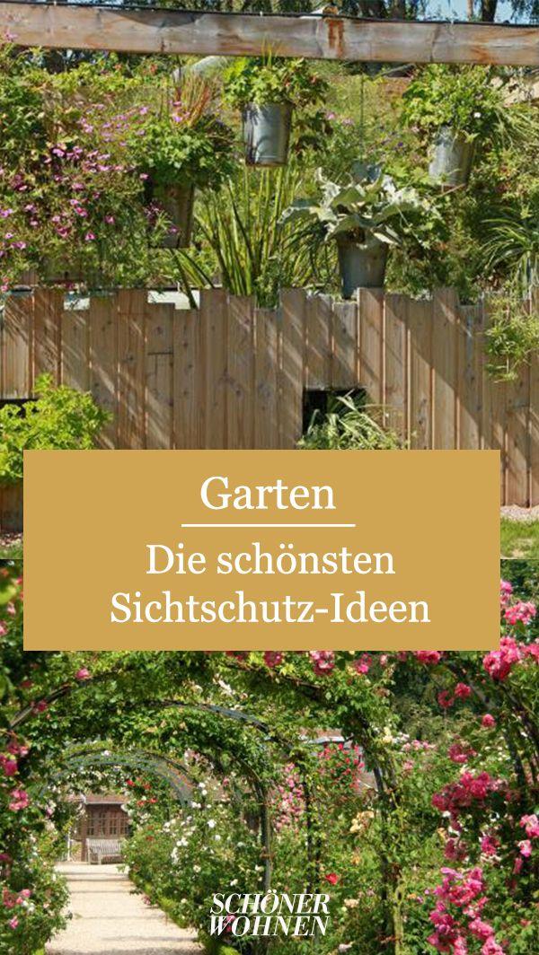 Die Schonsten Sichtschutz Ideen Garten Neu Gestalten Sichtschutzzaun Garten Sichtschutz Garten