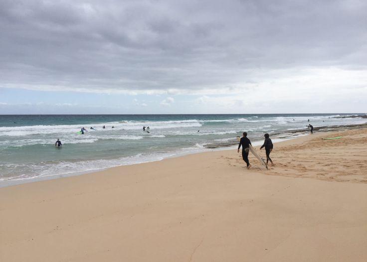 Surf Camp on Fuerteventura