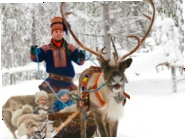 Lapland, Finland.  Arctic Circle reindeer herding.