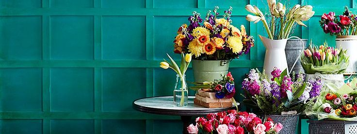 Shop spring flowers