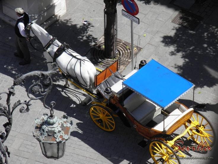 Carro de Caballos - Sevilla    http://www.quenosvamos.com/sevilla