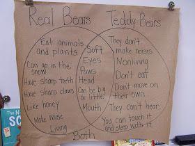 Fun in First Grade: Teddy Bear Day