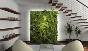 Green walls to mix the organic with the architectural.  Serve as living works of art, and when the right plants are used can also be natural atmospheric scrubbers.