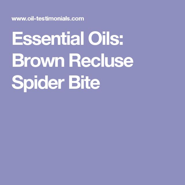 Essential Oils: Brown Recluse Spider Bite