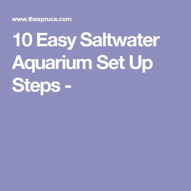 10 Easy Saltwater Aquarium Set Up Steps -