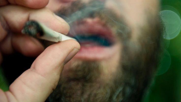 Drogenpolitik: Keine Angst vor legalem Cannabis - SPIEGEL ONLINE - Gesundheit