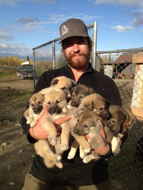 How was this guy able to hold all these puppies at once !