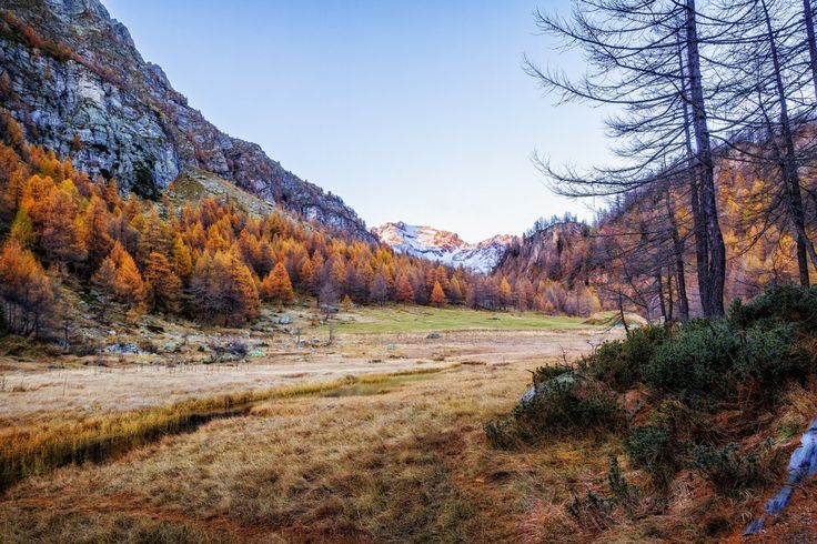 Fall colors at Alpe Devero