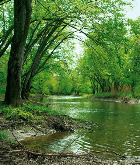 Susquehannah river, where Joseph Smith and Oliver Cowdery received the Aaronic Priesthood and were baptized.