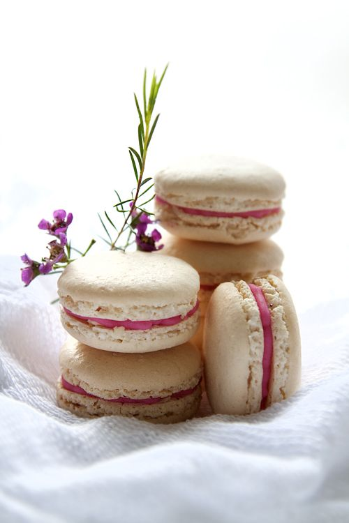 Chestnut Macarons with Pink Champagne Buttercream Filling (wish I'd found this BEFORE New Year's Eve)