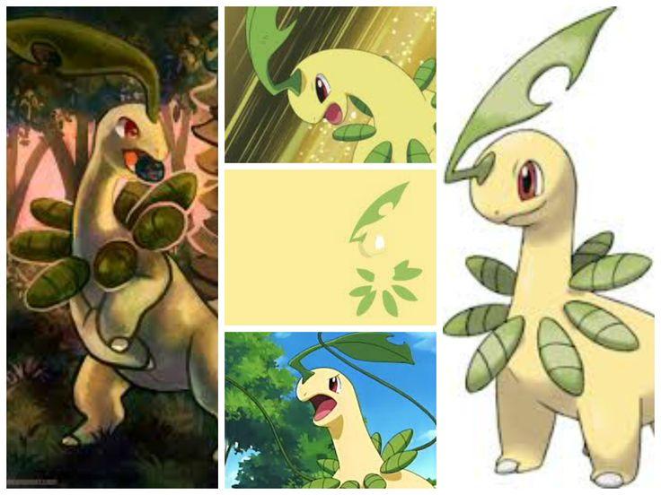 Bayleef(Leaf Pokémon)