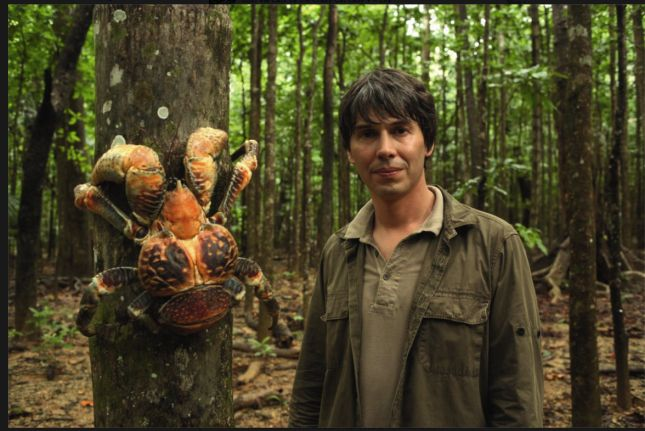 Coconut or robber crab, Birgus latro, with a very nervous-looking Prof. Brian Cox, Homo sapiens sapiens -I'd look nervous too!...dv