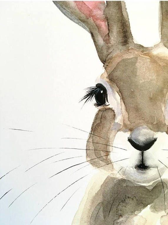 Rabbit Watercolor Haschen Kunst Osterhase Malen Tierkunst
