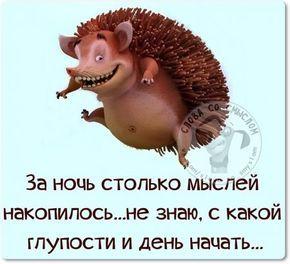 Юмор |женский | смешные картинки |на русском | позитив | утро