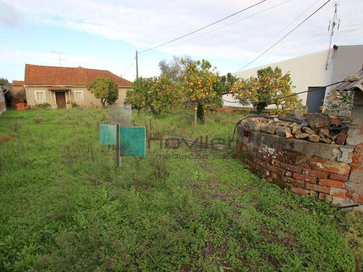 Moradia isolada T3 para restaurar com pátio interior e anexos, poço e 900m2 de terreno na zona dos Parceiros, Leira.  #moradia #casa #house #leiria #parceiros #imoveis #imobiliaria #novilei