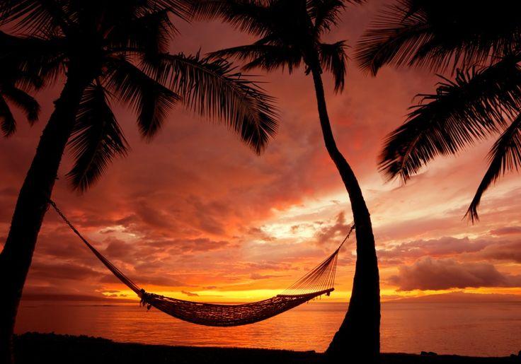 Czy zawsze marzyłeś, aby polecieć na Hawaje? Teraz masz na to wspaniałą okazję, a serwis Sonriso.pl na pewno Ci w tym pomoże. Zatem na co czekasz? Odwiedź stronę: http://www.sonriso.pl/, a Hawaje staną przed Tobą otworem!